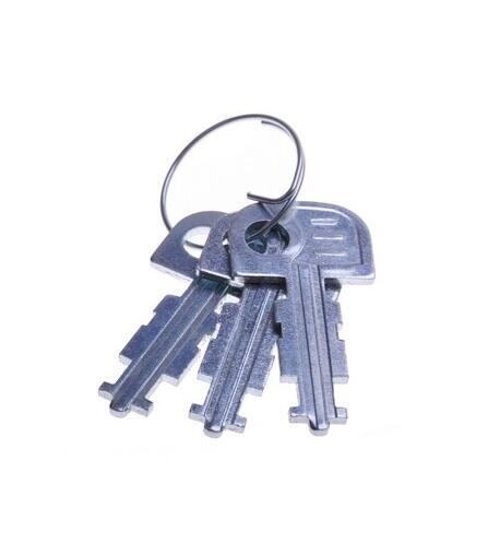Klíč k visacímu zámku TOKOZ RECORD 113/50+