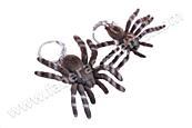 Přívěsek na klíče sametový pavouk